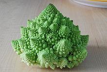 220px-Cauliflower_Fractal_AVM